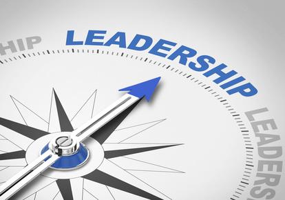 D3_lider